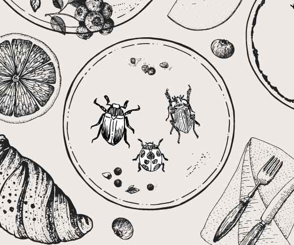 欧州で本格化する「代替肉」は昆虫!900万人の欧州人の舌をとらえる